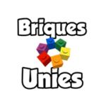 logo de Briques Unies